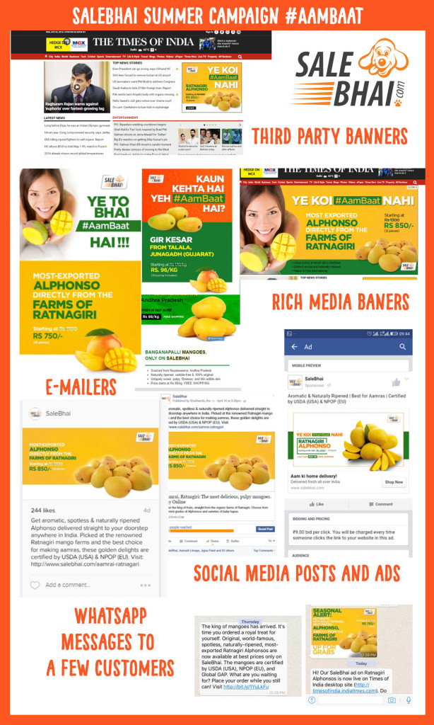Webeesocial-creative-digital-marketing-agency-delhi-campaign-mangoes-614x1024